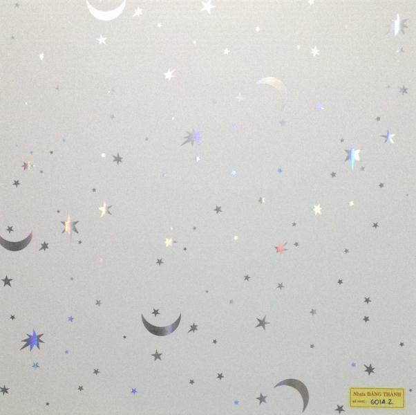 Tấm trần nhựa 600x600-6014-2
