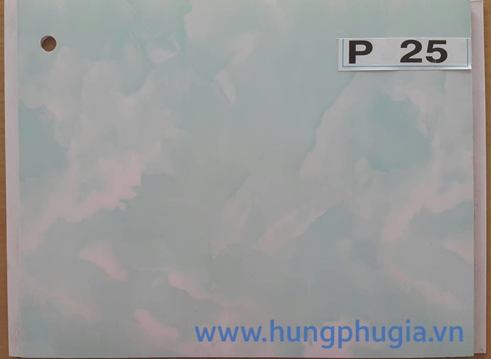 Tấm trần nhựa la phông 25cm p25