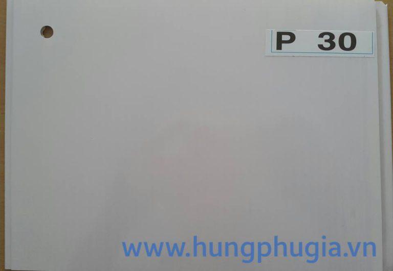 Tấm trần nhựa la phông 25cm p30