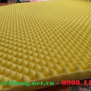 Mút trứng hột gà màu vàng dày 30mm và 50mm giá rẻ Tp.HCM